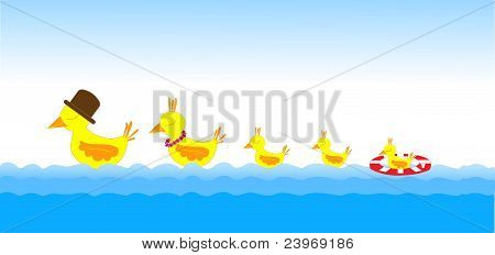 Birds family on the sea