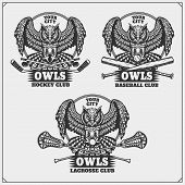 Lacrosse, Baseball And Hockey Logos And Labels. Sport Club Emblems With Owl. Vector. poster