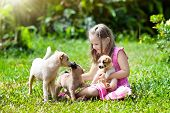Kids Play With Cute Little Puppy. Children And Baby Dogs Playing In Sunny Summer Garden. Little Girl poster