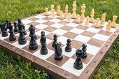 Chess Board With Chess Pieces On Green Grass. Selective Focus On Black Pieces. Outdoors Chess Game poster