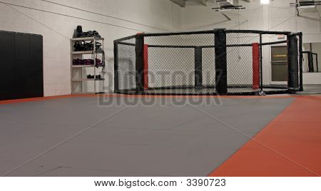 Mma Gym With Octagon Fight Cage