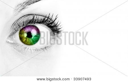 Woman eye. Isolated on white background.
