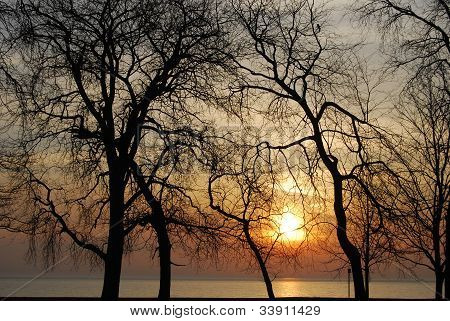 SILHOUETTED SUNRISE