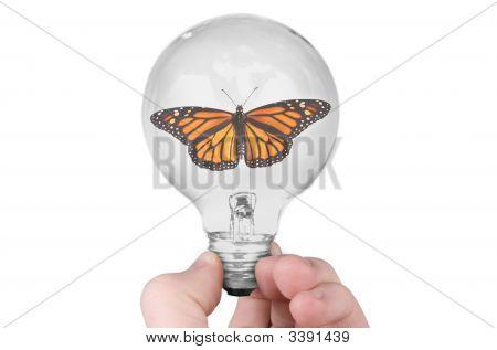 Monarch Butterfly In Light Bulb