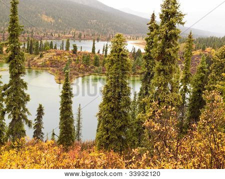 Chuva de Outono no deserto Lago, T. de Yukon, Canadá