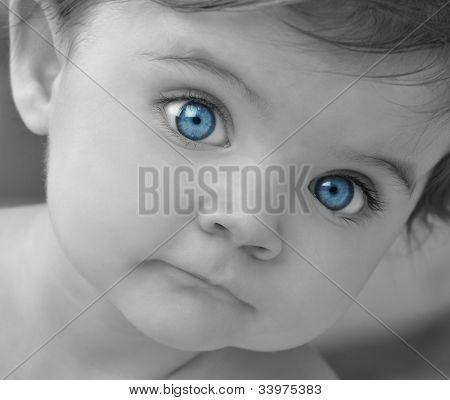 Little Baby Blue Eyes Closeup Portrait