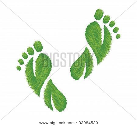 Eco Friendly Footprints Illustration