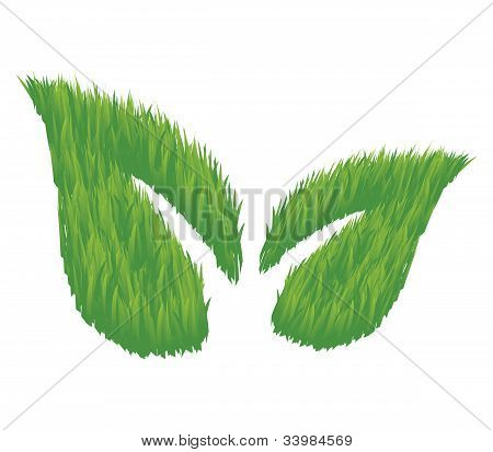Eco Friendly Leaves Illustration