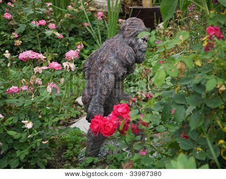 bigfoot in the garden