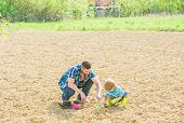 Small Boy Child Help Father In Farming. New Life. Soils And Fertilizers. Father And Son Planting Flo poster