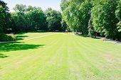 foto of clos  - green lawn in Clos Luce Leonardo da Vinci - JPG