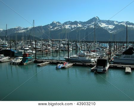 Resurrection Bay - Seward, Alaska 1