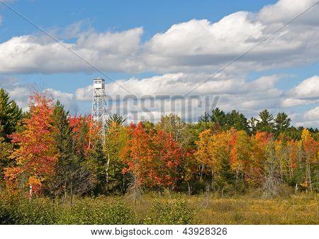 Autumn Fire Tower