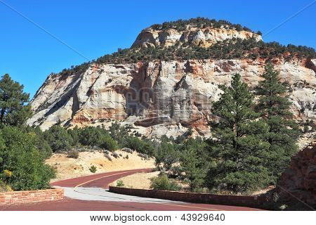 Zion National Park, USA. The picturesque road to the multi-colored sandstone cliffs spectacularly bent