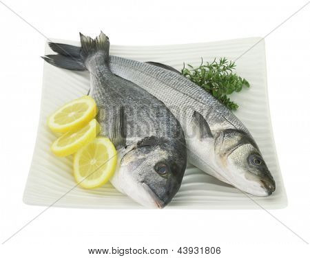 Fresh fishes with lemon and herbs on plate isolated on white