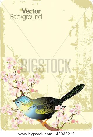 Cute bird sitting on blossom tree branch. Vector illustration.