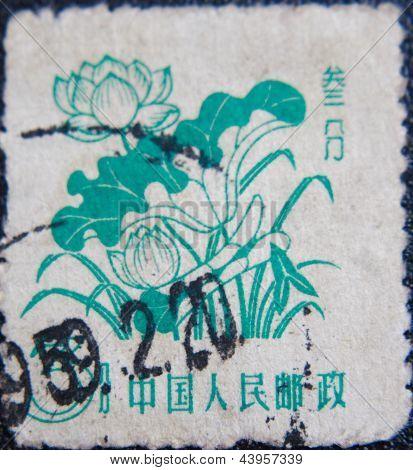 CHINA - CIRCA 1959: stamp printed by China at 1958 shows  few lotos