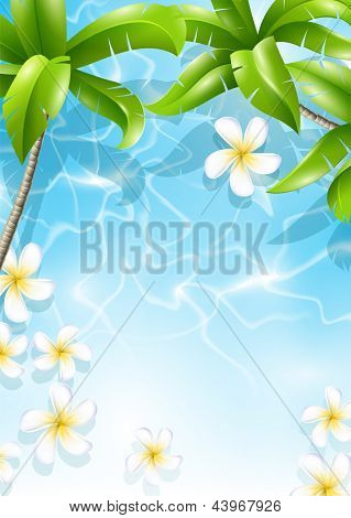 Hojas del Frangipani florece en el agua de mar en Palma. Diseño tropical