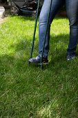 stock photo of aeration  - Woman is aerating lawn by manual aerator in back yard - JPG
