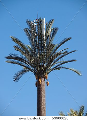 Artifical Palm Tree
