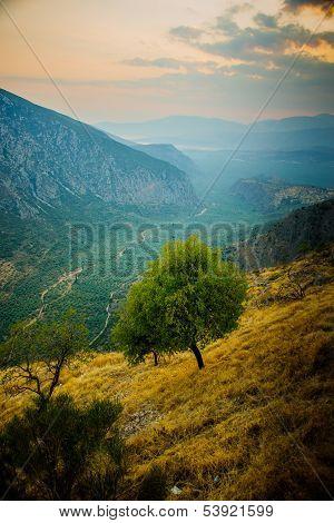 Valley Near Delphi