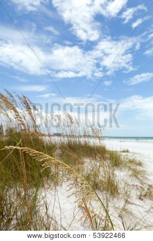 Siesta Key Florida