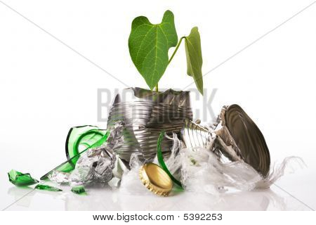 Green Recycling Concept Plant Growing Out Of Rubbish