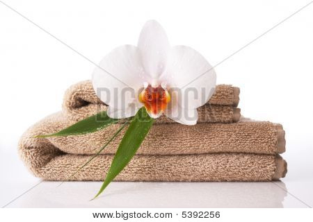 Close Up Of Towel And Orchid