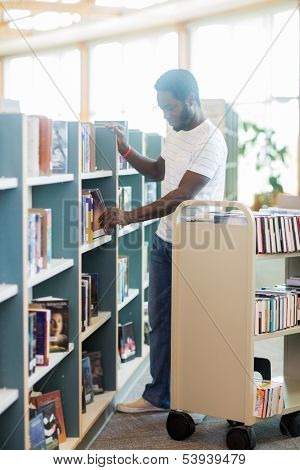 Full length of male librarian arranging books in shelf at library
