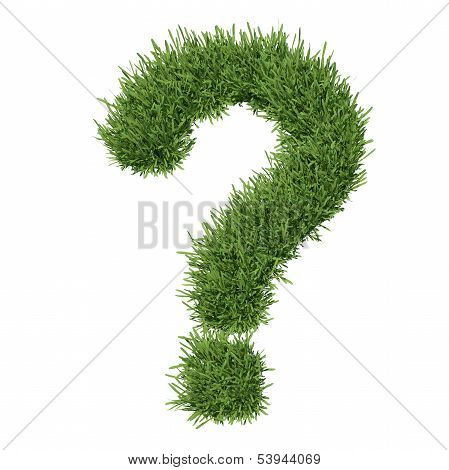 Question mark made ??of grass