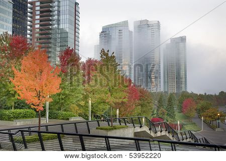 Misty Morning Vancouver