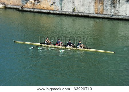 Rowers on river, Seville, Spain.