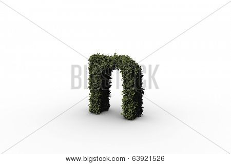 Lower case letter n made of leaves on white background