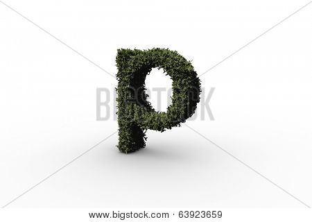 Lower case letter p made of leaves on white background