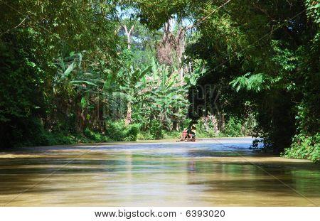 Jamaica's River