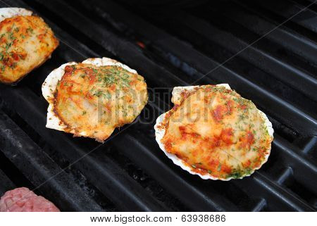 Grilling Summertime Stuffed Clam Shells
