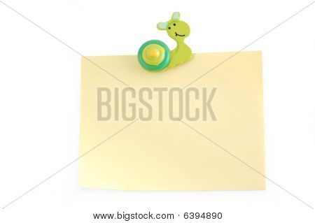 Snail On A Sheet