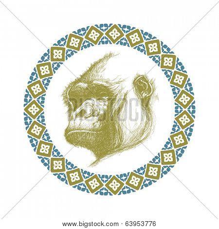 hand drawn gorilla realistic vector eps 8