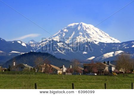 Mt. Rainier Viewed From Across A Field