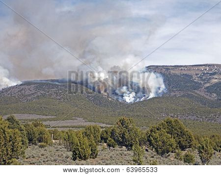 Fire On The Hillside