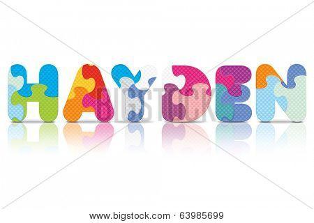 HAYDEN written with alphabet puzzle - vector illustration