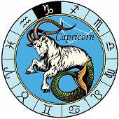 picture of capricorn  - capricorn astrological zodiac sign - JPG