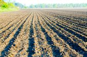 image of plow  - plowed agricultural field - JPG