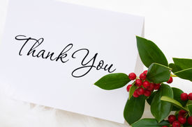 pic of thank you note  - A thank you card with holly and berries on a white fur background thank you card - JPG