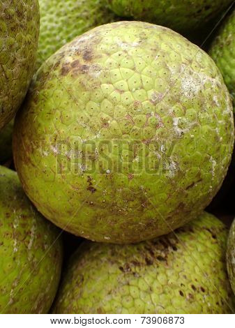 Pile Of Breadfruits
