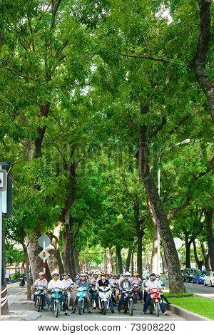 Asian City, Big Tree, Vietnamese Street