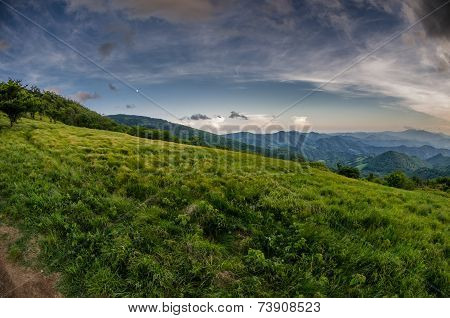 Grassy Field In Roan Mountain Highlands
