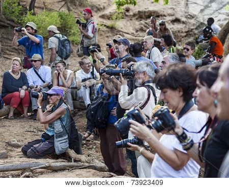 Tourists Take Pictures Of Preparation For Bull Jumping Ceremony.