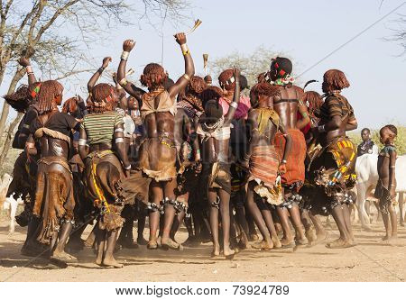 Group Of Hamar Women Dance At Bull Jumping Ceremony.