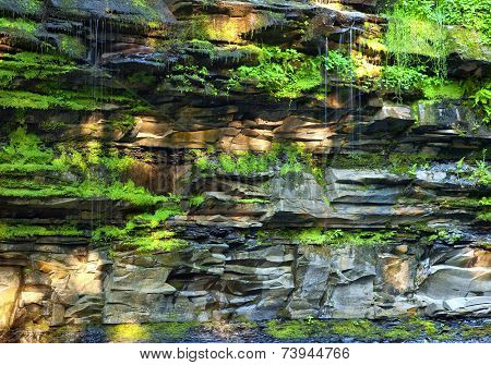 Trickles Of Water and Light